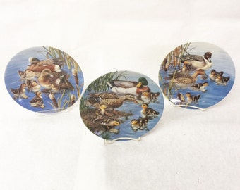 3 Set of Duck Plates