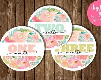 Milestones, floral milestones, baby milestone cards, monthly baby cards, watercolor flowers