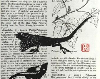 Block Print Lizard Love on garden book page Linocut Artist Print