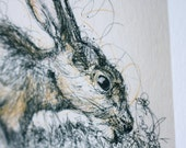 Spring Hare Pen and Ink Illustration Print