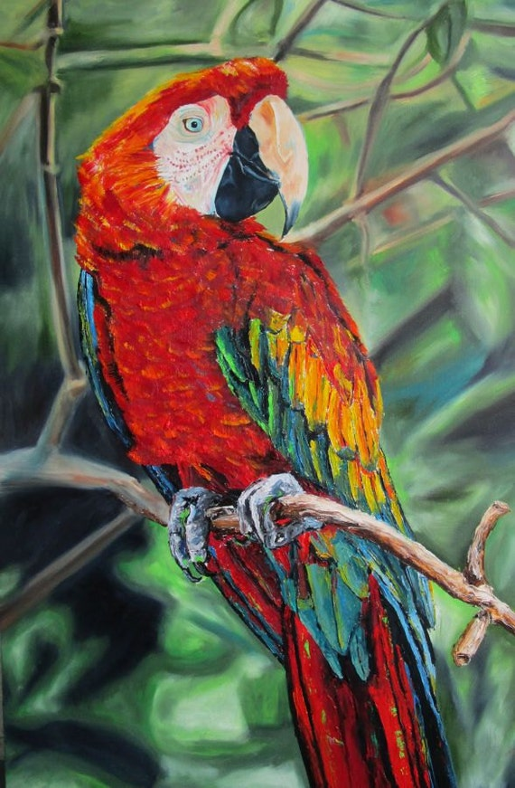 Scarlett Macaw Parrot Large Birds Red Limited Edition Print Matted!
