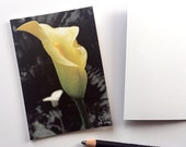 calla lily card, yellow flower note card, botanical invitation, photograph notecard set, 5 cards and envelopes