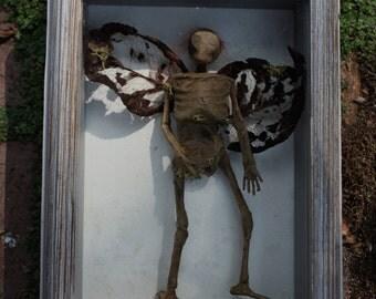 Mummified Woodland Fairy