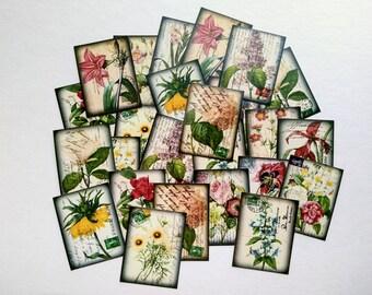 """25 Flower Stickers, 1.5"""" x 2"""" (38x51mm), Vintage Ephemera Stickers, Vintage Floral stickers, Botanical stickers, Recycled stickers"""