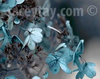 Blue Gray Wall Art, Flower Photography, Hydrangea, Pastel, Neutral, Bedroom Wall Art, Blue Powder Room Art