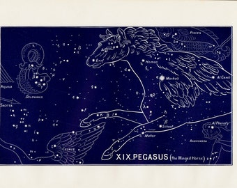 1895 Antique STARS CHART print, Pegasus the winged horse, Constellations. original vintage astronomy lithograph + 100 years old