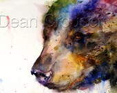 BLACK BEAR Watercolor Greeting Cards by Dean Crouser