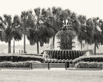 Charleston Pineapple Fountain Print - Black and White South Carolina Photography - Southern Home Decor - Waterfront Park Photo - Palm Trees