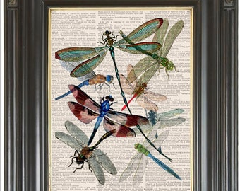 dragonfly collage | etsy