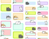 Colorful Kitten Quarter and Half Boxes~ Hand-Drawn Planner Stickers For Erin Condren Planners, Happy Planners & Many Others!