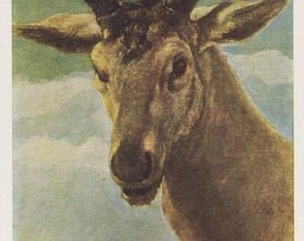 "Diego Velazquez ""Head of a Deer"" Postcard -- 1966"