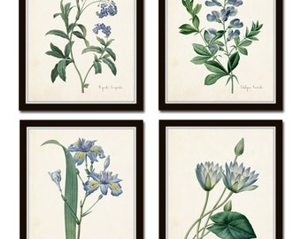 Botanical Print Set, Redoute Botanical Prints, Art Prints, Giclee, Blue Botanical Prints, Illustration, Wall Art,Blue Flower Prints, Collage