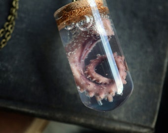 Small Dome Bottled Octopus Tentacle