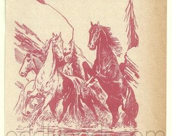 1950's Horse Stallion Original Vintage Illustration Print