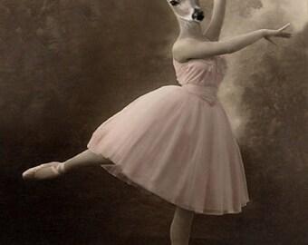 Grace, Vintage Deer Print, Ballerina Deer, Altered Photo, Anthropomorphic, Photo Collage, Whimsical Art, Unique Wall Decor, Victorian Deer