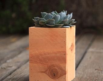 "Cedar Succulent Planter Box (Tall) 5x5x7.5"""