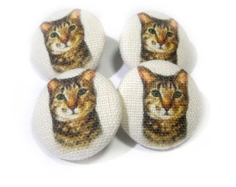 Fabric covered buttons tabby Cats Kitten, bag purse ivory buttons, funny cat buttons, children kids buttons, sewing buttons, sweater buttons