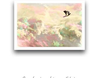 A4 Avian Prints