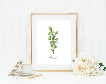 Herb Art Print, Thyme, Watercolor Herb Print