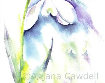 Snowdrop flower - Blank Greetings Card, Watercolour Card, Watercolor Card