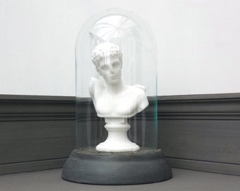 Classical Bust in Glass Display Dome