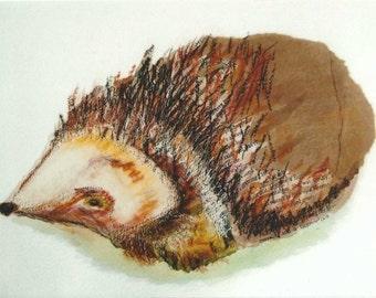 Hedgehog mixed media art print
