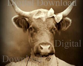 Mrs. Cow Digital Download Photo