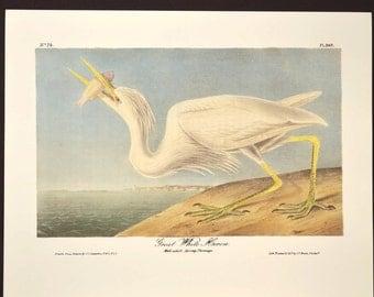 Nautical Wall Art Sea Bird Wall Decor Print Ocean Heron