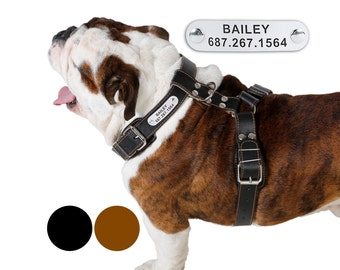 Leather Dog Harness Adjustable Size Medium Large PERSONALIZED ID TAG Black Brown
