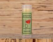 Organic Lip Balm // Spearmint Eucalyptus