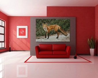 Red Fox Encounter, Forest Green, Fine Art Animal Print, Nature Wildlife Photography Lover, Wall Art Photo Printable, Home Office Decor Gift
