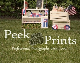 7ftx9.3ft 4th of July Firework Stand All in One  - Vinyl Photography Backdrop- 4th of July, Memorial Day, Patriotic Backdrops