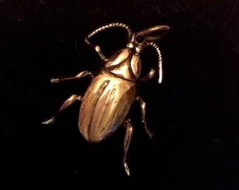 sterling silver beetle
