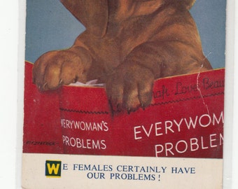 Floppy Ear Female Dog Reading Everywoman's Problems/We Females Certainly Have Our Problems/Postcard