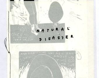 Natural Disaster: An Artist's Book