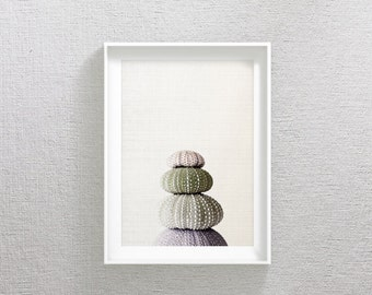 Sea Urchin Shell Print, Marine Wall Art, Sea Urchin Decor For Bathroom, Nautical Print, Sea Urchin Wall Art, Summer Print, Sea Urchin Shell