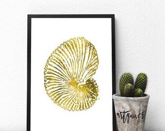 Animal Art, Seashell Art, Prints, Seashell Wall Art, Poster, Trendy Wall Designs, Large Wall Art, Trendy-art, Framed art, framed prints