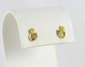 14k Black Hills Gold Earrings Grape and Leaf Stud Post Earrings