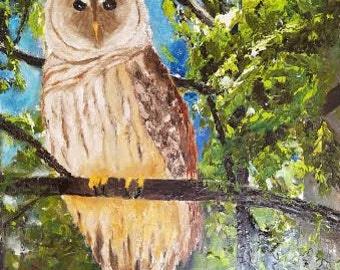 Barred Owl Oil Painting