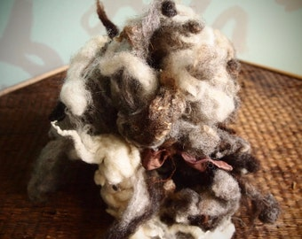 Lovey's spotted Jacob washed wool by the ounce