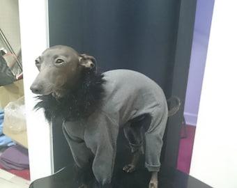 CHIC PAJAMAS with fur for Italian Greyhound