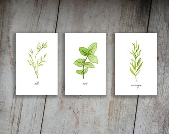 Kitchen Herbs Watercolor Illustration Art Print Set of 3 Option 4