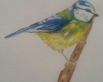Original acrylic blue tit painting (not a print)