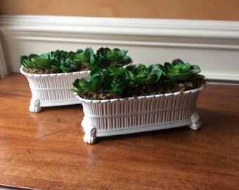 Vintage Planter Set With Succulents
