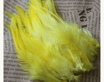 PROMO * lot of 100 natural feathers