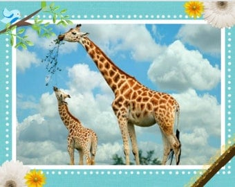 Blue Skies Giraffe.  All proceeds from this card go to help Ugandan Orphans. Paper and party supplies, Paper, Stationary, note cards, art
