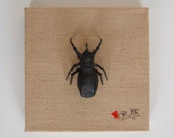 Big origami beetle