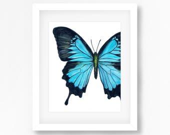 Blue Swallowtail Butterfly Watercolor Fine Art Print
