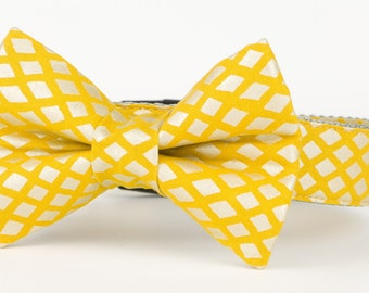 Yellow Bow Tie Dog Collar, Yellow Dog Collar, Dog Bow Tie, Custom Dog Collar, 1 Inch Dog Collar, Dog Accessories, Sunshine Trellis