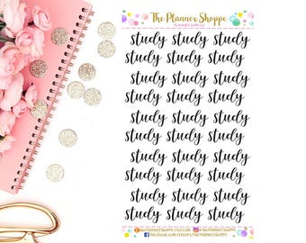 STUDY // Script stickers // calligraphy stickers // school stickers // handwritten sticker //
